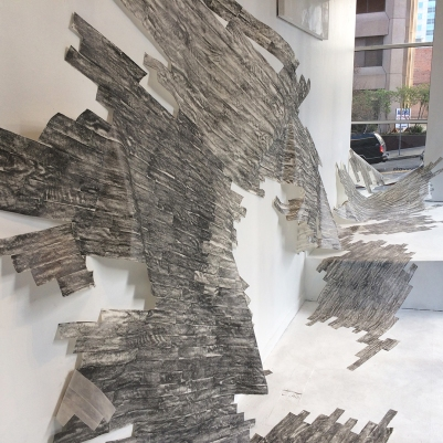 Allison Hyde / Traces and Transformations / located at Woolworth windows