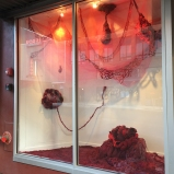 Amanda Triplett / Fibrous Body / located at Woolworth windows