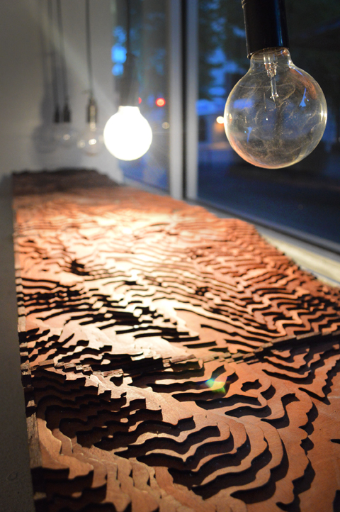 Light travels over the surface of intricately cut layers of wood, enhancing the topography with moving shadows.