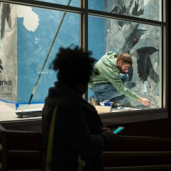 "Brad Dinsmore in progress of setting up his Artscapes installation ""Doves & Ravens"" in Woolworth Windows. Photo by Kris Crews."