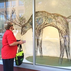 "Tim Carter admires installation by Eva Funderburgh. The Artscapes artist installed this evocative sculpture ""Looking forward, Looking backward"" in Woolworth Windows in August-November 2016. Photo courtesy of Spaceworks."